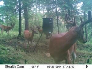 Hunting season 2014